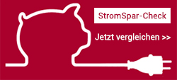 StromSpar-Check